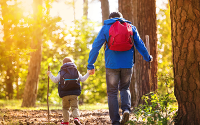 Tips to Keep the Whole Family Active