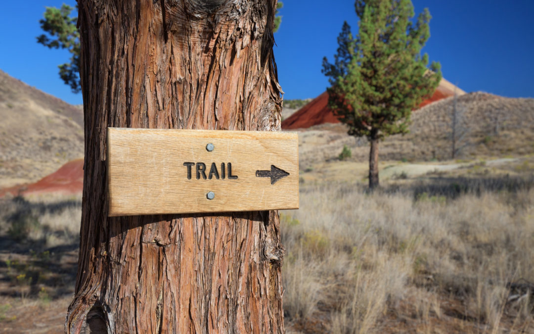 Avoid These Common Hiking Injuries